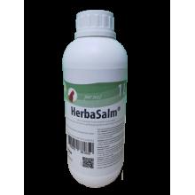 HerbaSalm® (1 L)
